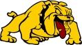 Bulldog Logo copy 2